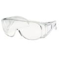 Visitors Vented Side Arm Safety Glasses