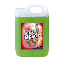 Mr Muscle All Purpose Cleaner [2x5L]